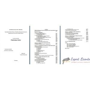 PUBLICITATEA ONLINE (2) – LUCRARE DE LICENTA