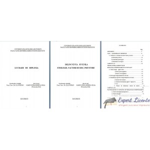 DELINCVENTA  JUVENILA. ETIOLOGIE, FACTORI DE RISC, PREVENIRE – LUCRARE DE DIPLOMA
