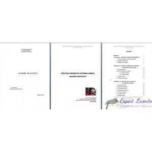 EFECTELE MIGRATIEI INTERNATIONALE ASUPRA COPILULUI – LUCRARE DE LICENTA
