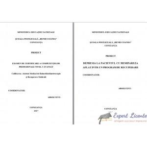 DEPRESIA LA PACIENTUL CU HEMIPAREZA AFLAT INTR-UN PROGRAM DE RECUPERARE