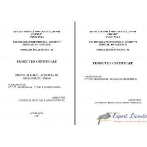 ZINCUL SI ROLUL ACESTUIA IN ORGANISMUL UMAN (2)