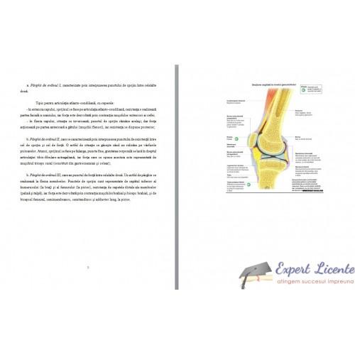 Reumatismul articular acut: simptome, diagnostic, tratament
